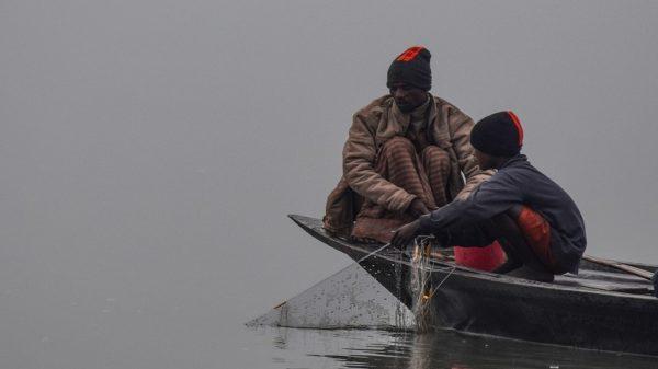 তীব্র শীত এবং ঘন কুয়াশাকে উপেক্ষা করে জীবিকার তাগিদে চলছে বাবা ও ছেলের মাছ ধরা